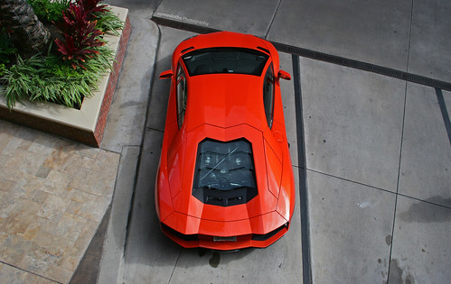 from above roof orange plants cars coffee car bay cool texas view angle top vanity engine houston saturday plate aerial asshole lp license 700 lamborghini meet supercar v12 lambo 7004 worldcars aventador lp700 lp7004 sumosloths 370h55v 37oh55v
