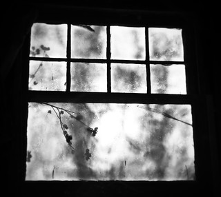 Old window. #garage | by ranti.junus