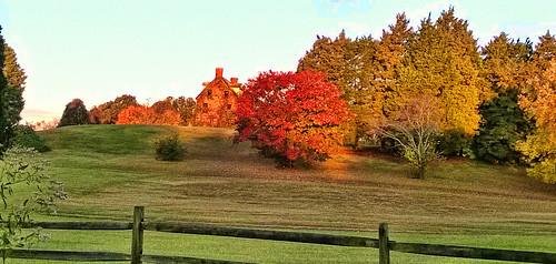 autumn trees house nature colors fence landscape hill annapolis hauntedhouse lydiasrest