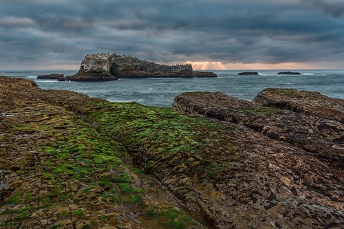 ocean california sunset seascape clouds landscape coast pacific pelican shore algae intertidalzone greyhoundrock pelicanrock greyhoundrockcountypark californiacoastalnationalmonument
