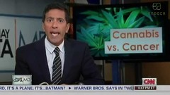 Medical Cannabis Oil Uk
