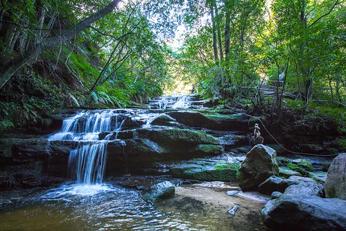 Cascade in the Shade | by Johanna Barton