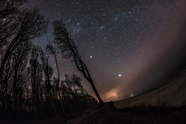 Nienhagen Gespensterwald @night