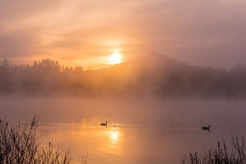 weather fog clouds sunrise nikon pacificnorthwest washingtonstate tamron pnw wx snohomishcounty northwestwashington lakestevens d810 lakecassidy ryderphotographic howardryder tamronsp7002000mmf28divcusd