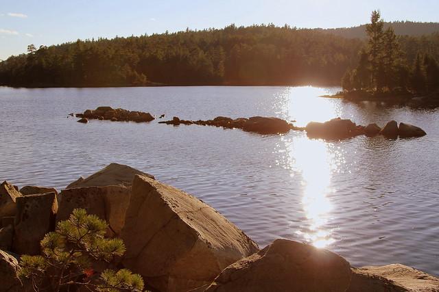 Warm Evening, Wolf Lake
