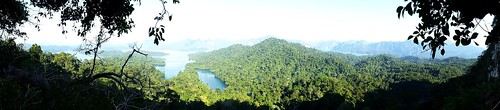 trees lake water forest thailand seasia outdoor dam panoramic hills jungle panoramicview cheowlanlake panasoniclumix khaosoknp