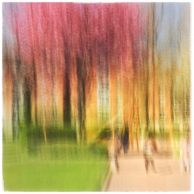 St Patrick's Cathedral #dublin. A 4 sec exp #iphone6 #photoimpressionism #slowshuttercam