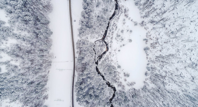 Aerial view of the stream