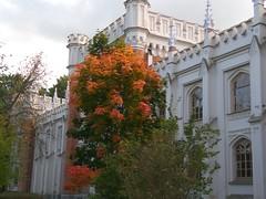 www.liyareynin.com-puti34