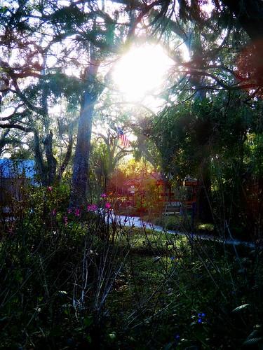 sunsetonthestarsandstripes sunset oldglory americanflag garden trees flowers sunlight leaves grass gazebo building sugarmillgardens portorangeflorida nature outdoors landscape scenic