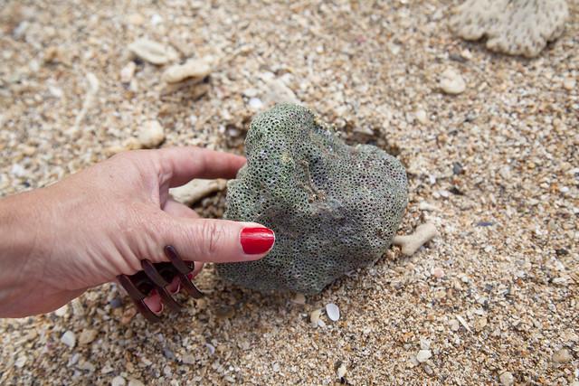 Green porous mystery