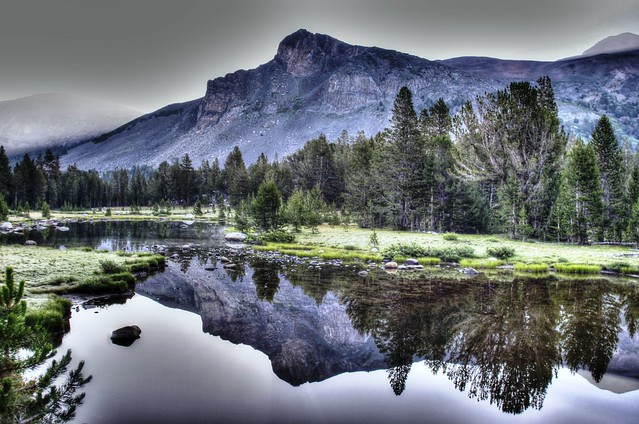 Early Morning Yosemite