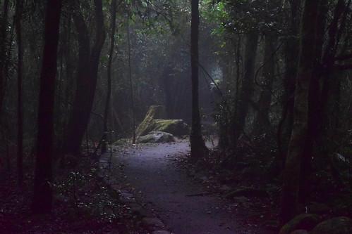 springbrooknationalpark