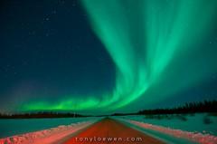 Tony Loewen Photography -
