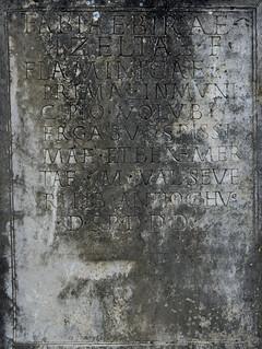 Volubilis: dedication to the flaminica Fabia Bira, detail