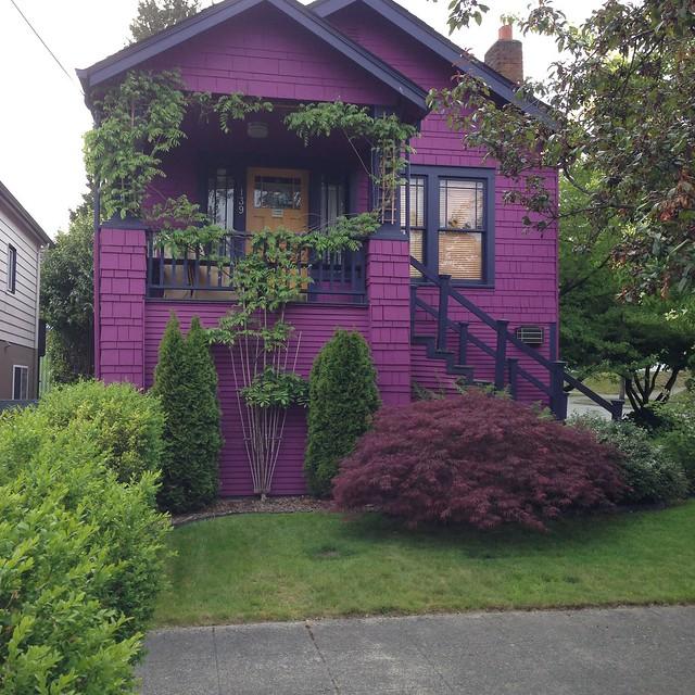 Purple house. Off of John St., Seattle, WA