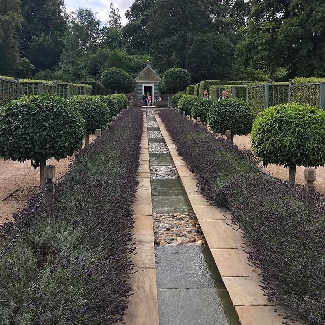Gardens of Surprise