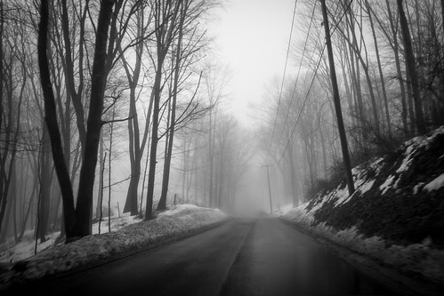 trees winter blackandwhite mist snow ny newyork fog woods westchestercounty southsalem lewisboro sonydscrx100 kitchawanroad
