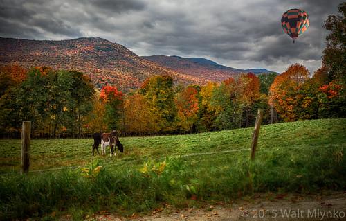 autumn us vermont seasons unitedstates fallcolors event stowe genericevent