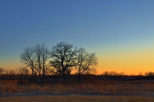 sunset sky usa tree silhouette evening us illinois nikon telephoto prairie nikkor lakecounty 18200mm d90 stevelamb heroncreekforestpreserve