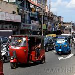 09 Viajefilos en Sri Lanka. Kandy 35