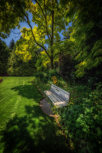 hbm happybenchmonday vancouver vandusenbotanicalgarden vandusengarden samyang14mm28 nikond750 martinsmith ©martinsmith lawn grass flowers trees
