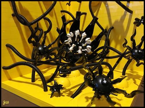 BLACK FLOWER   by jarekwally