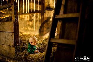 Filip in the barn