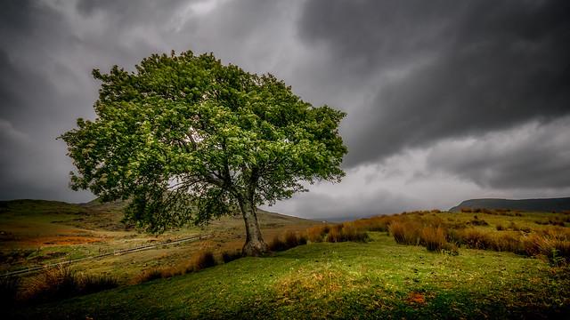 Storm ...