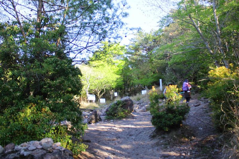 2014-05-07_02925_九州登山旅行.jpg