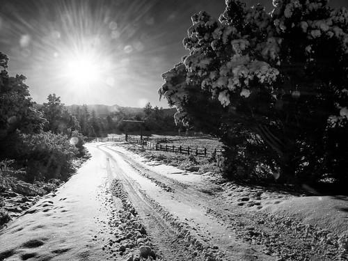 road ranch winter sun mountain snow mountains fence gate colorado unitedstates sunburst rockymountains ridgway sanjuanmountains rockymountainscolorado