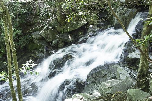 Falls along Big Stonecoal | by lifeinthedistrict