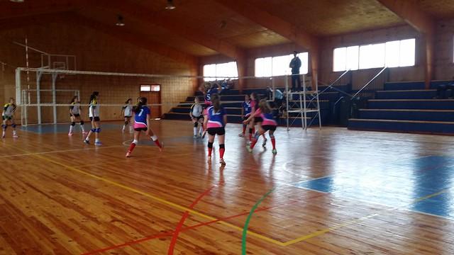 1504 - 13 Vóleibol