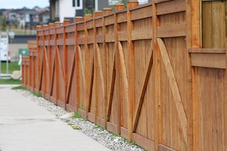 HFF Happy Fence Friday   by davebloggs007