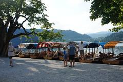 Bled: Blejsko jezero