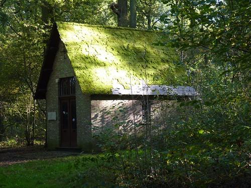 Kapel Bos van Marpingen