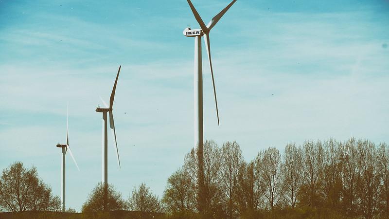 Windmills open field