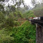 13 Viajefilos en Sri Lanka. Tren a Ella 42