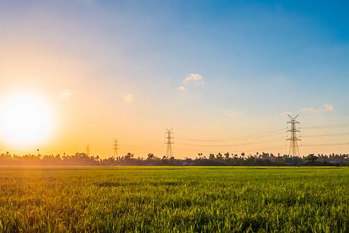 light sun nature lumix philippines panasonic ricefield lx7