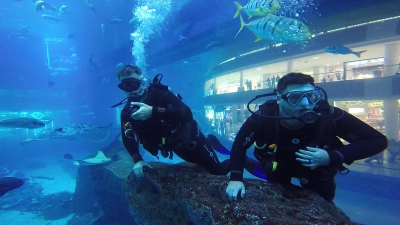 Dubai Mall Aquarium scuba dive