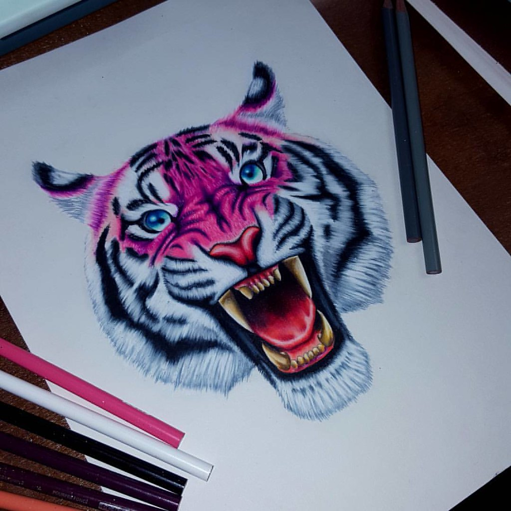 The pink tiger color pencil drawing i did in three hours flickr