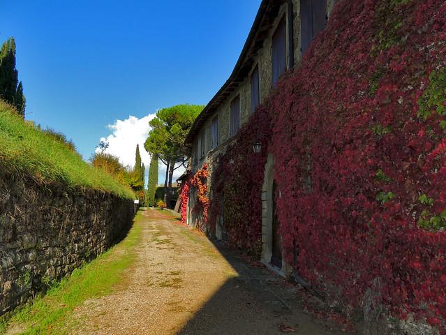 Presso il castello di Romena