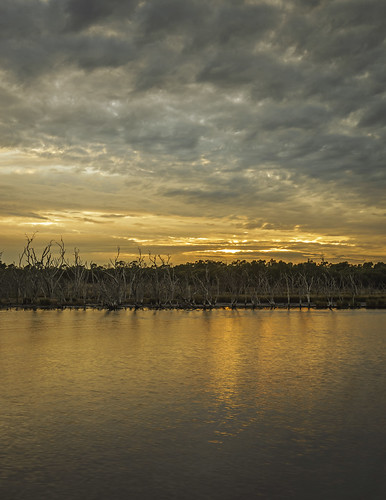 trees light reflection nature water clouds sunrise river landscape dawn scenery sony scenic australia wideangle alpha westernaustralia swanriver daybreak maylands carlzeiss a99 sal1635z variosonnar163528za slta99 stevekphotography