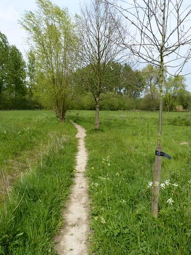 Buurtweg naast Bos van Marpingen