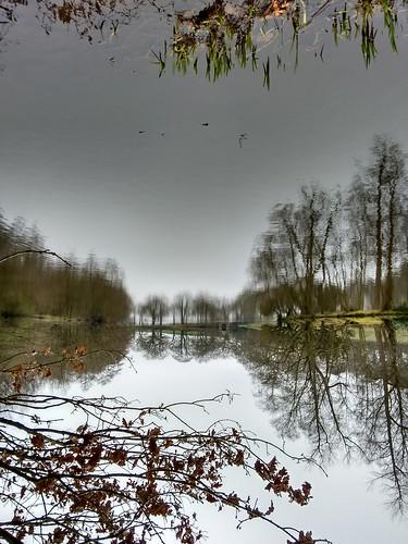 Biddulph Grange Country Park | by Steve_Mc
