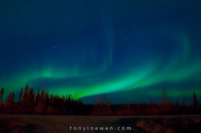 aurora in the breeze