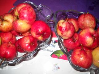 Zaarour Mayhow Berry Fruits Aug 7, 2016 (16) | by toutberryfarms