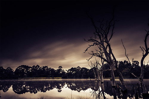 nikond800 leannecole leannecolephotography photos fineartphotography fineartphotographer images environment environmentalphotography environmentalphotographer photographer victoria australia banyule flats haida haidandfilter ndfilter10stop ndfilter morning