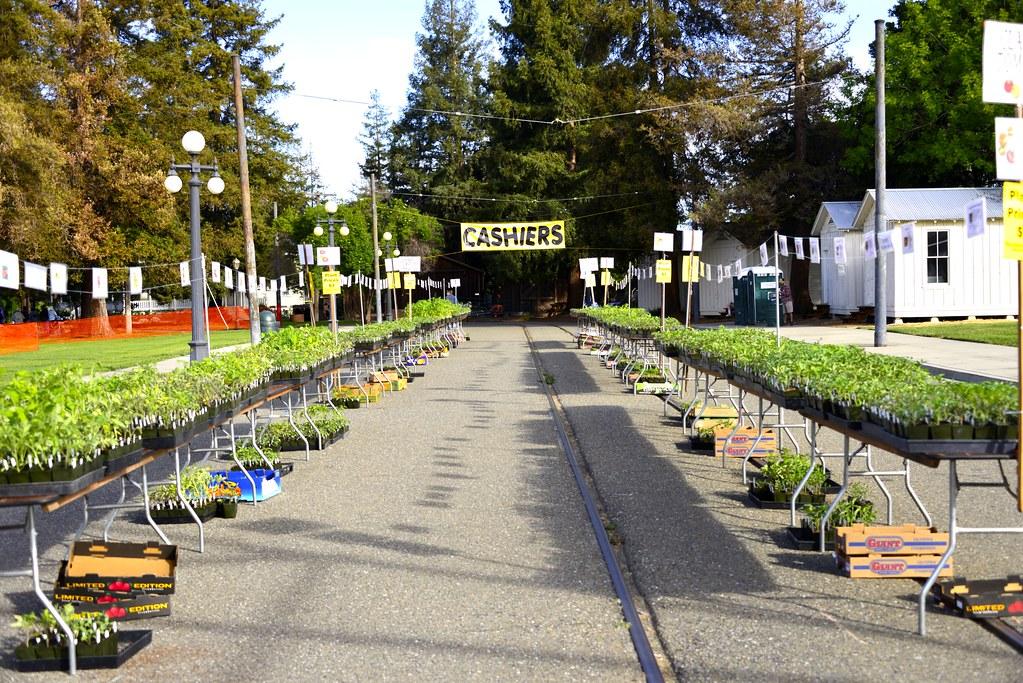 Dsc4370 master gardeners of santa clara county flickr - Master gardeners santa clara county ...