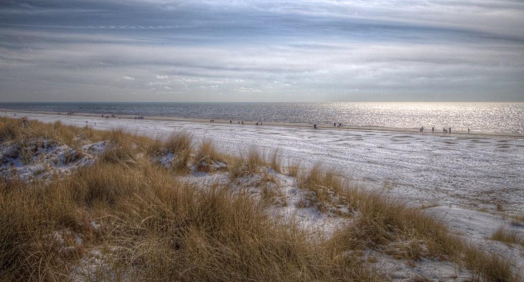 Winter-wander-land